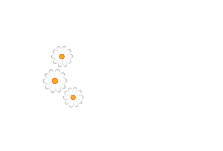 ruthies flower shop logo conway nh
